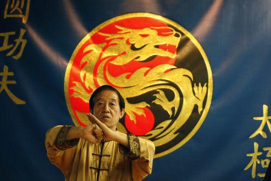Grand Master Chen Zhenglei